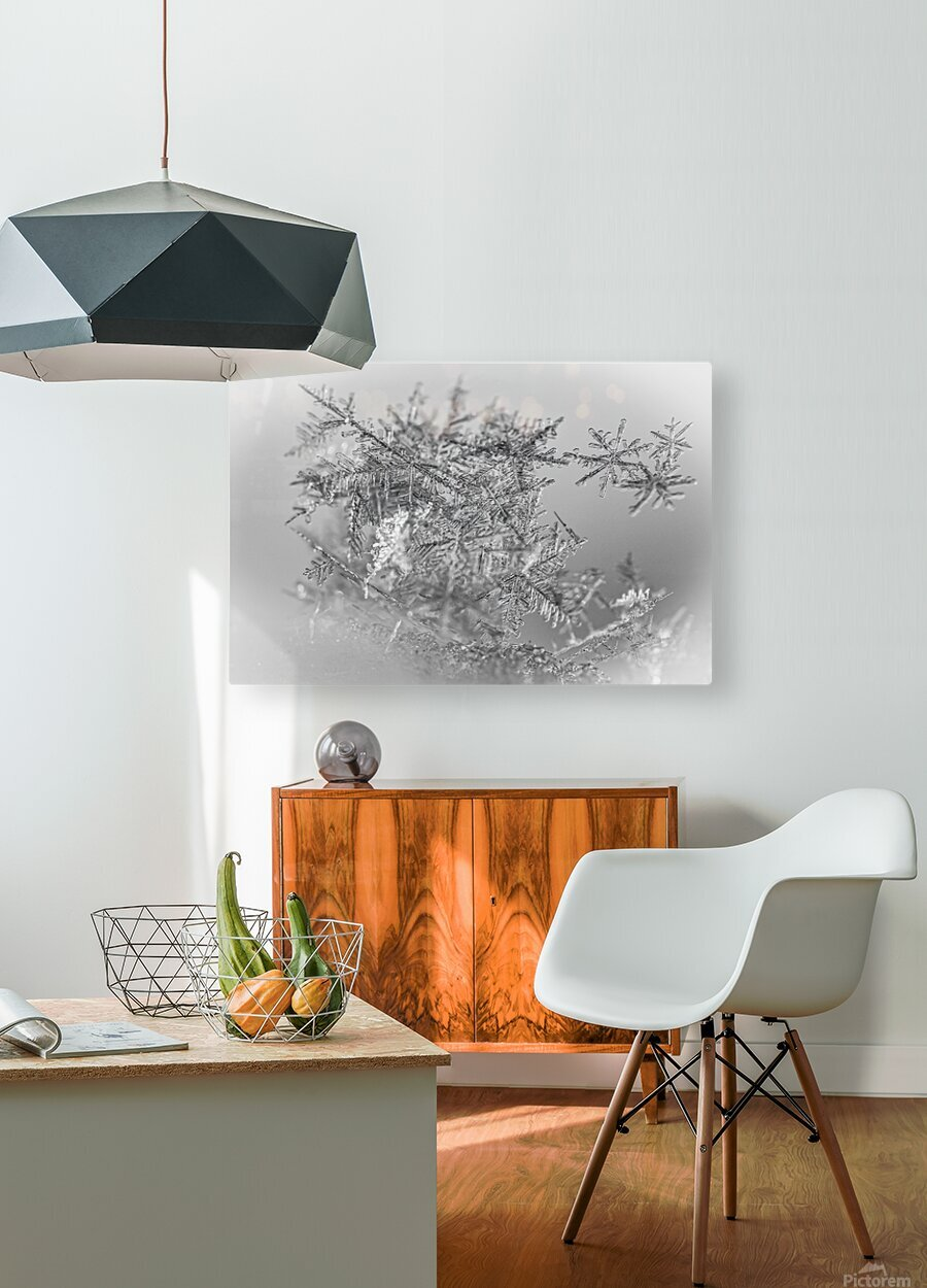Pointe  HD Metal print with Floating Frame on Back