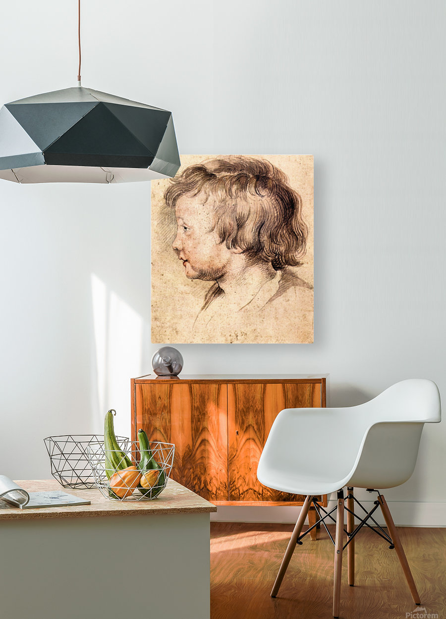 Son Albert by Rubens  HD Metal print with Floating Frame on Back