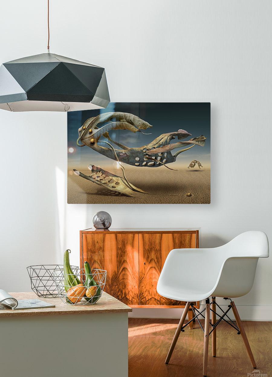 K_214  HD Metal print with Floating Frame on Back