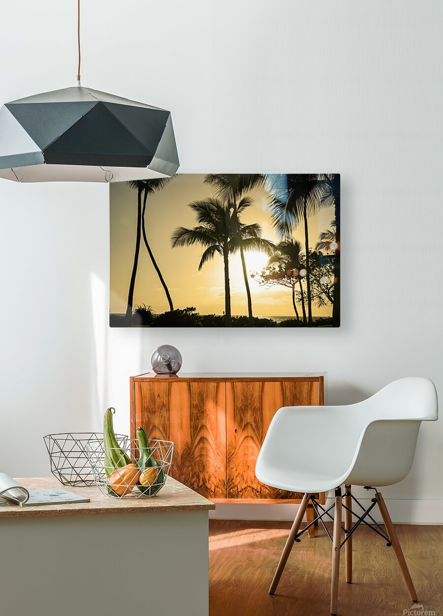 Through the Palms  HD Metal print with Floating Frame on Back
