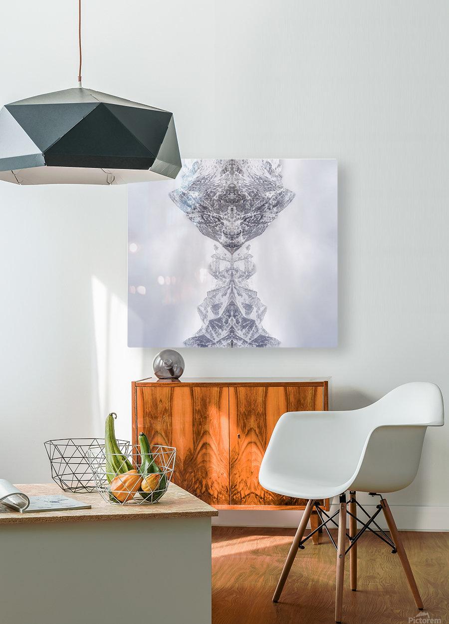 HIDDEN by Ignacio Palacios   HD Metal print with Floating Frame on Back