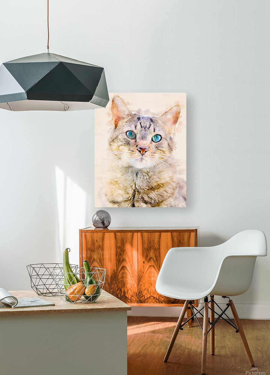 Dragon Li Hau cat  HD Metal print with Floating Frame on Back