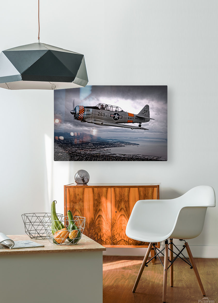 Over Under by Thomas T.   HD Metal print with Floating Frame on Back