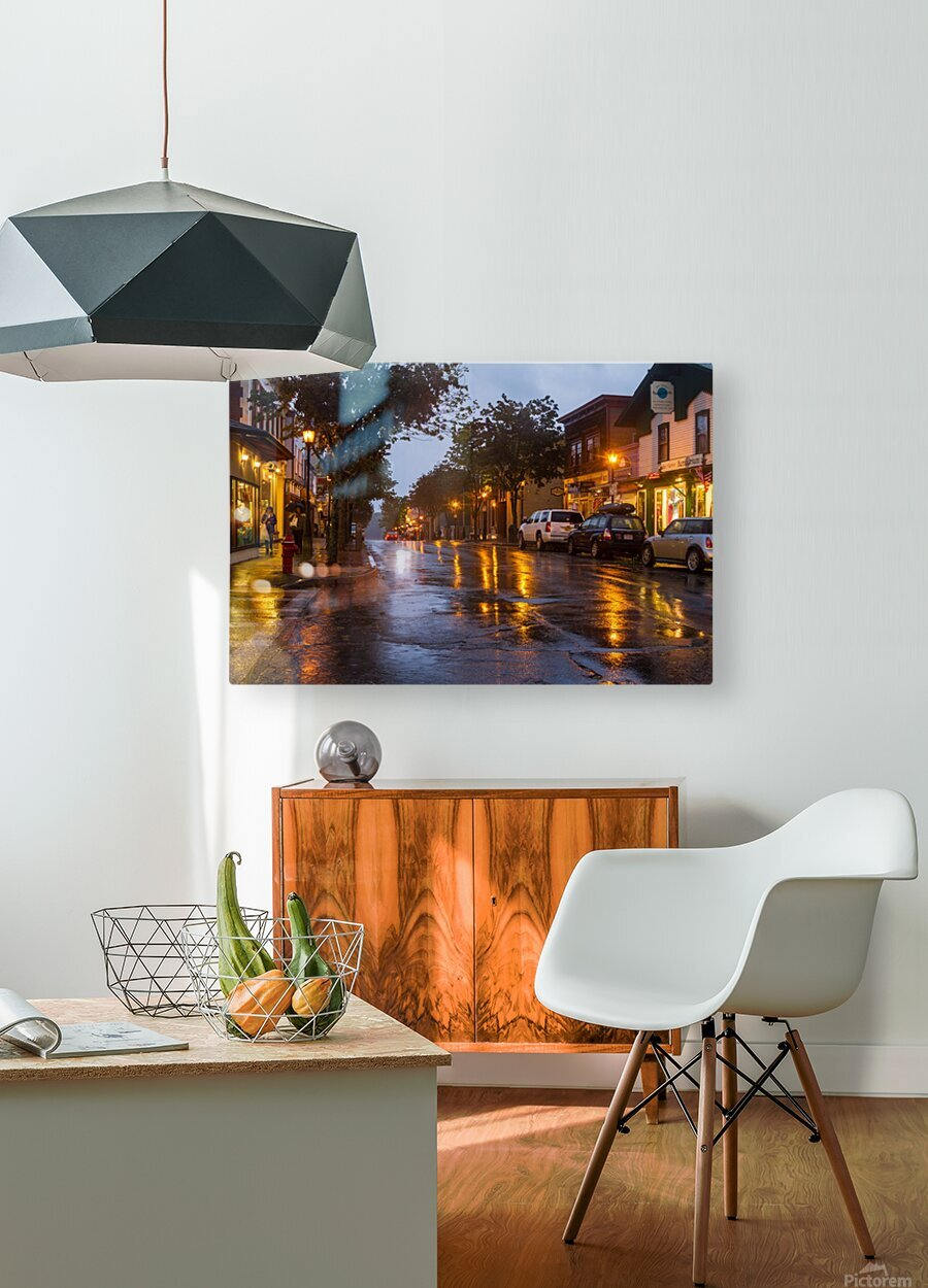 Bar Harbor ap 1539  HD Metal print with Floating Frame on Back