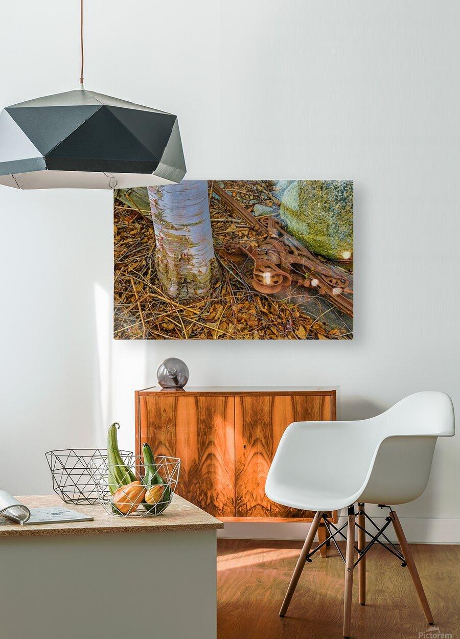 Barn Trolley ap 2241  HD Metal print with Floating Frame on Back
