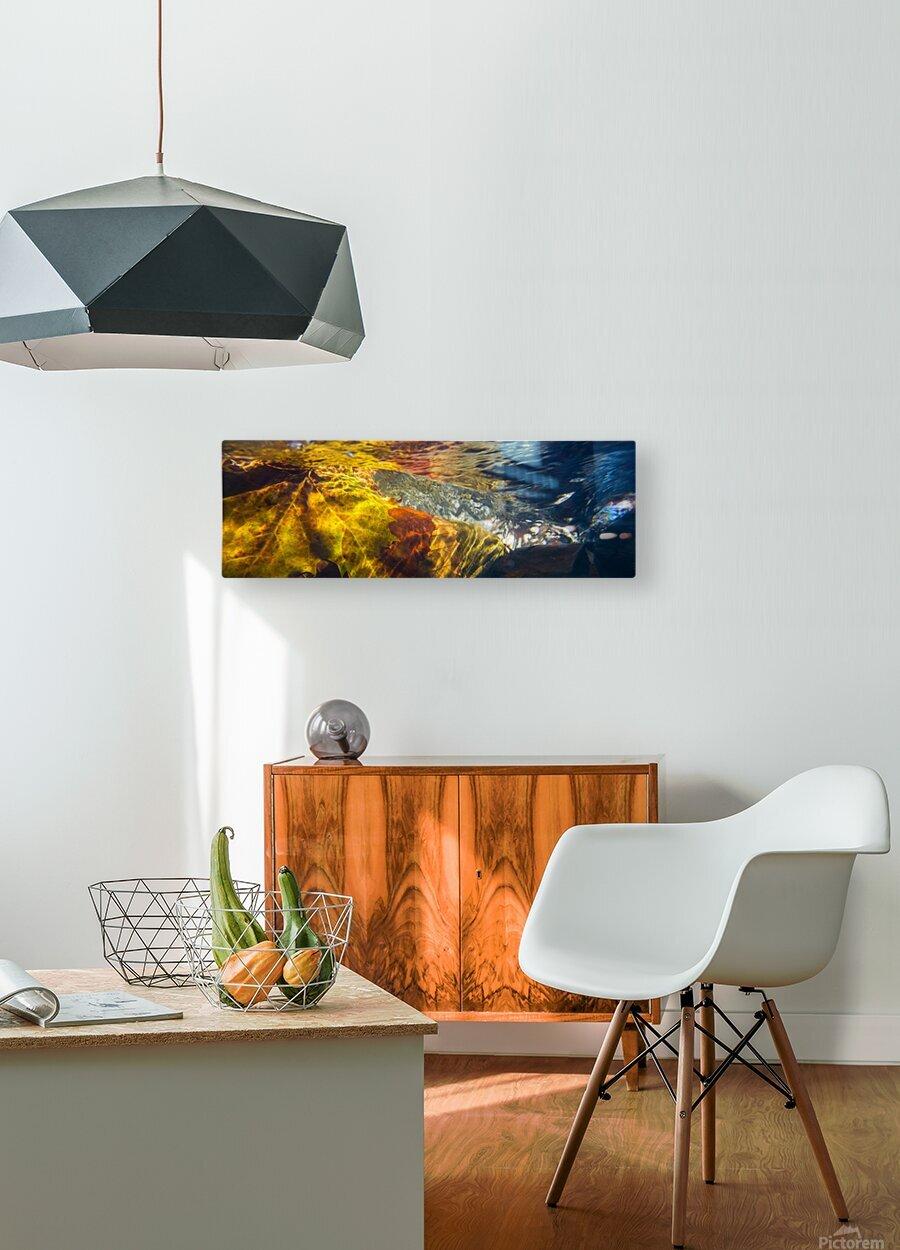 Leaves ap 2076  HD Metal print with Floating Frame on Back