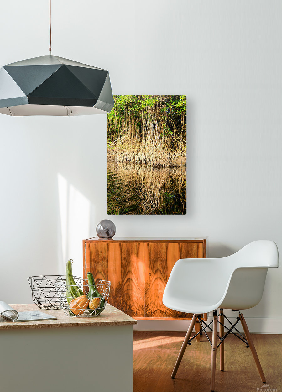 Mangrove roots  HD Metal print with Floating Frame on Back
