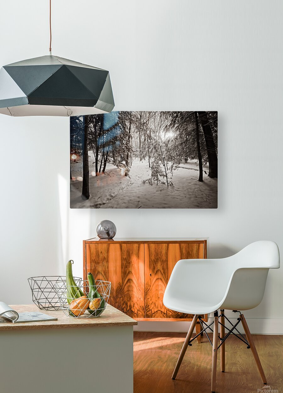 Sunlight ap 2731 B&W  HD Metal print with Floating Frame on Back