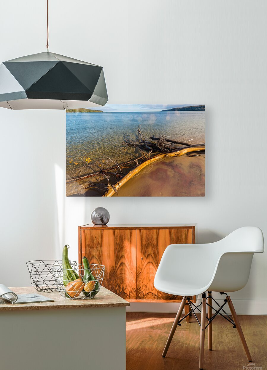 Driftwood ap 2481  HD Metal print with Floating Frame on Back