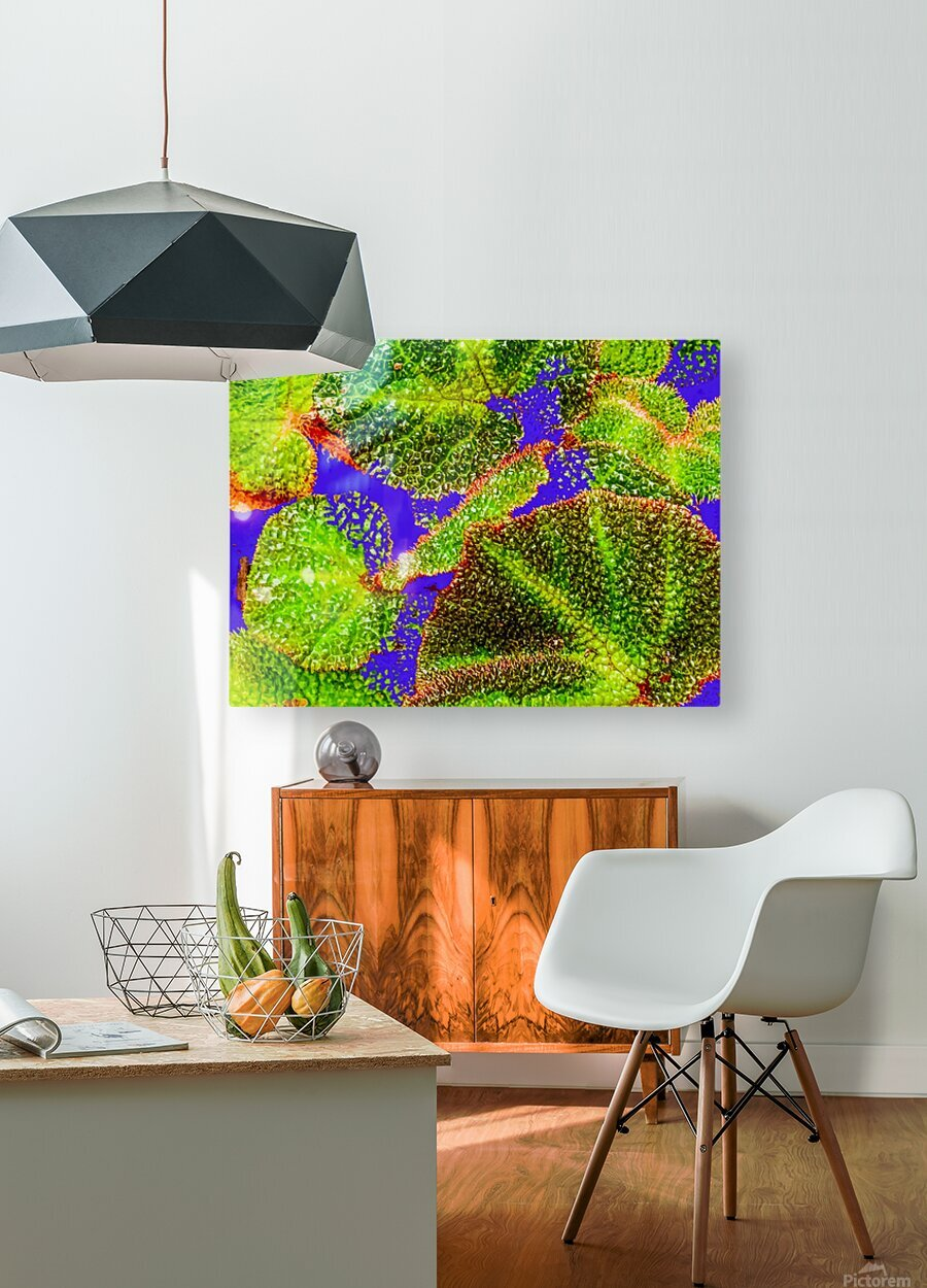 Tropical Colours  HD Metal print with Floating Frame on Back