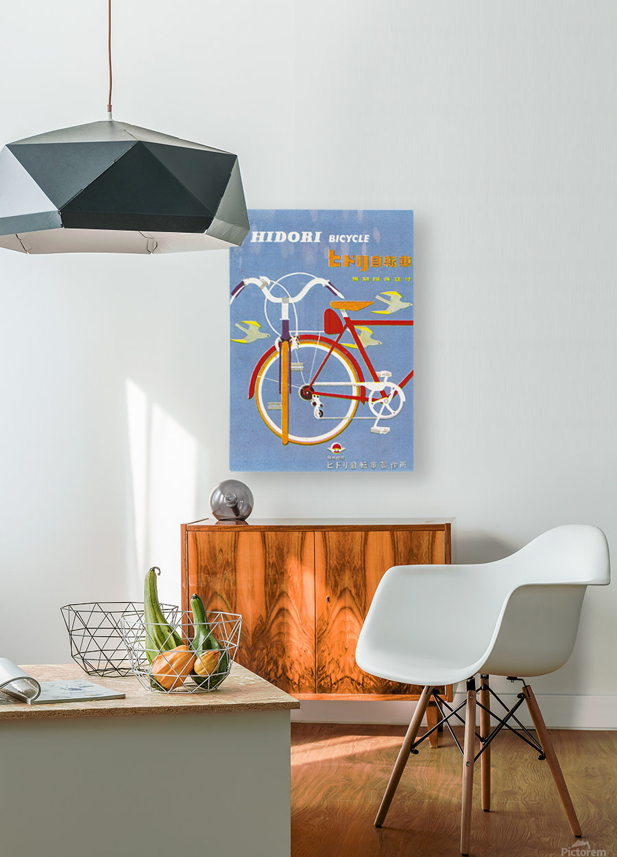 Bicycle Hidori  HD Metal print with Floating Frame on Back