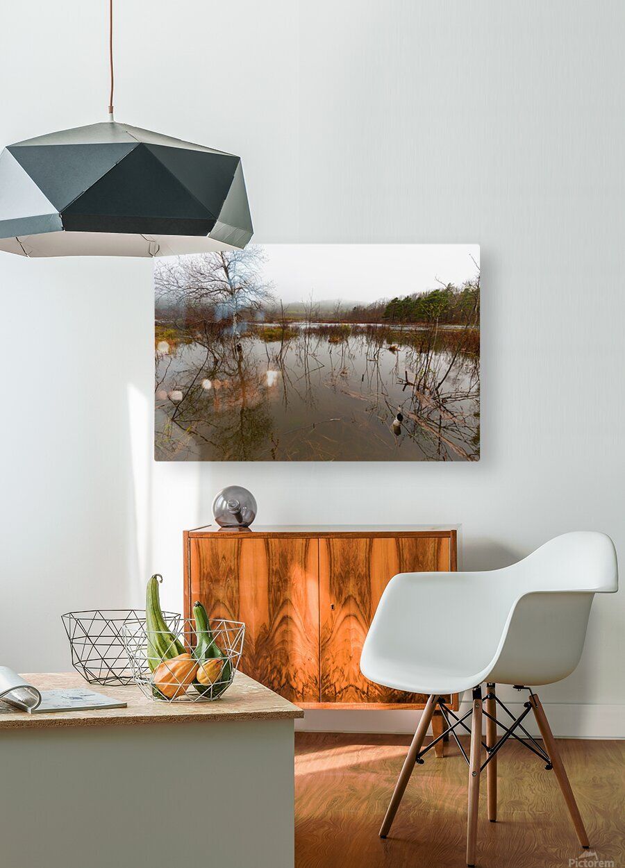 Beaver Pond ap 2357  HD Metal print with Floating Frame on Back