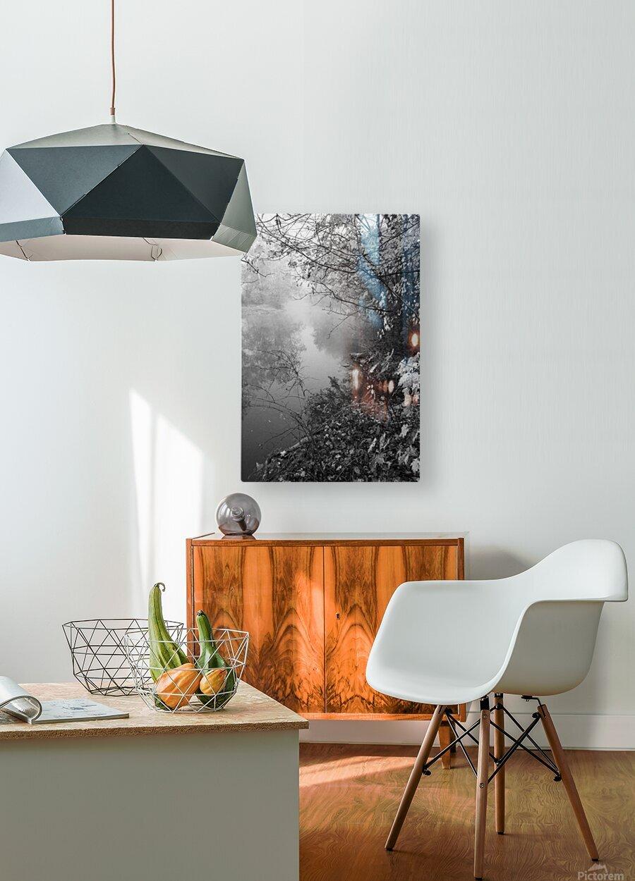 Morning Fog ap 1570 B&W  HD Metal print with Floating Frame on Back