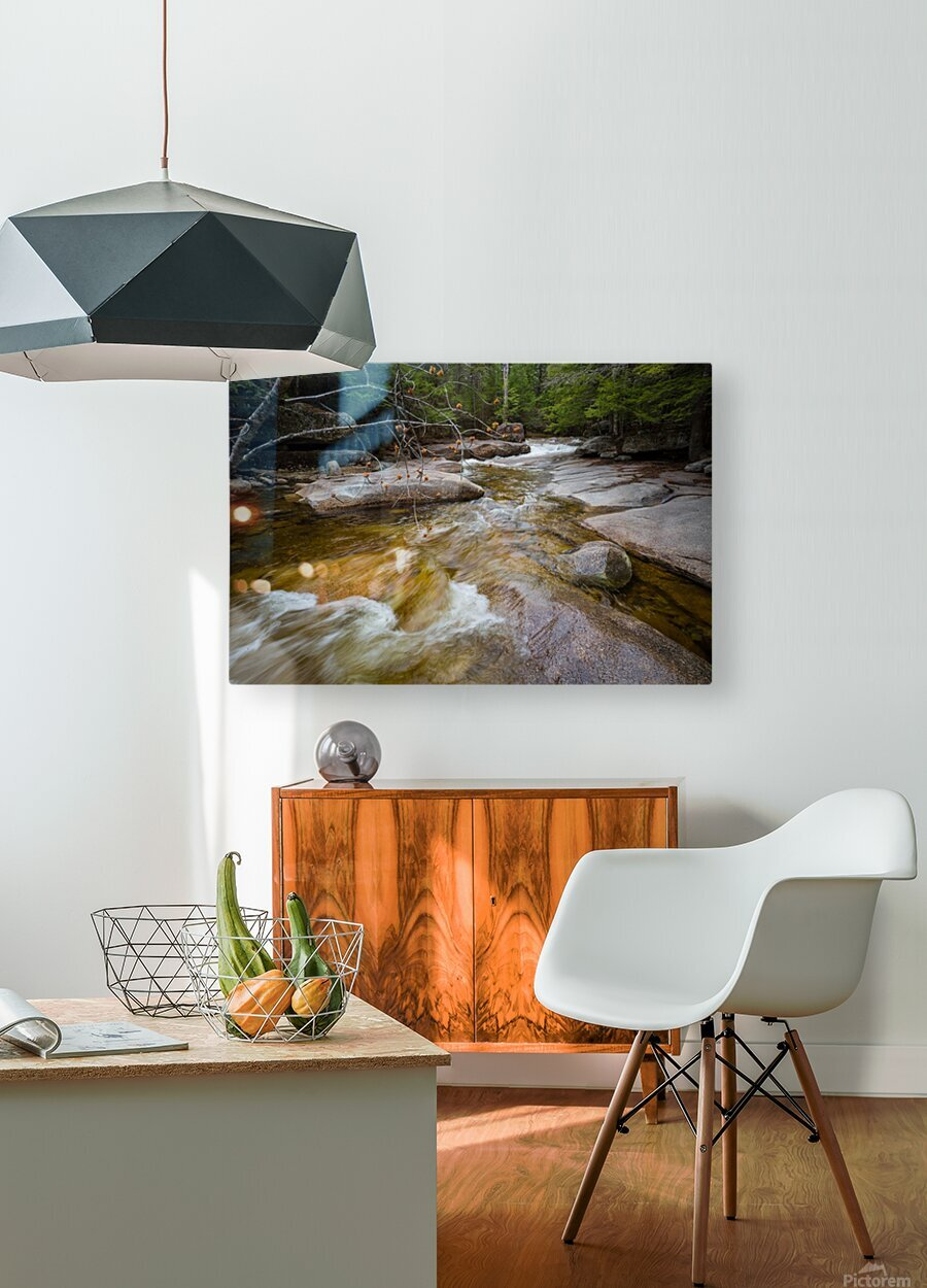 Lucy Brook ap 2217  HD Metal print with Floating Frame on Back
