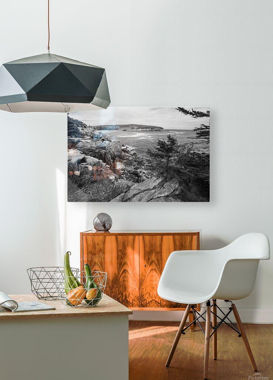 Acadia ap 2376 B&W  HD Metal print with Floating Frame on Back