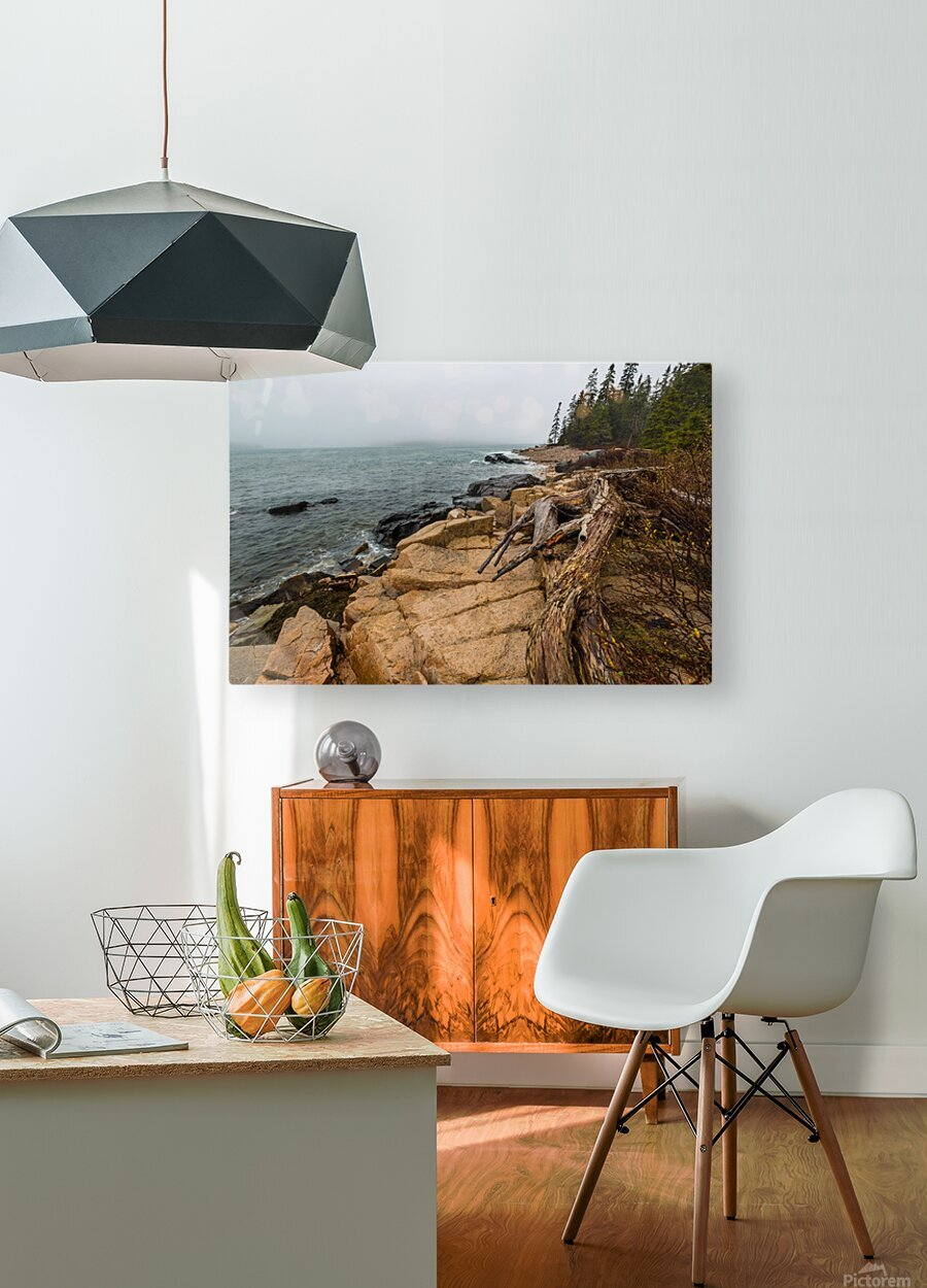 Driftwood ap 2257  HD Metal print with Floating Frame on Back