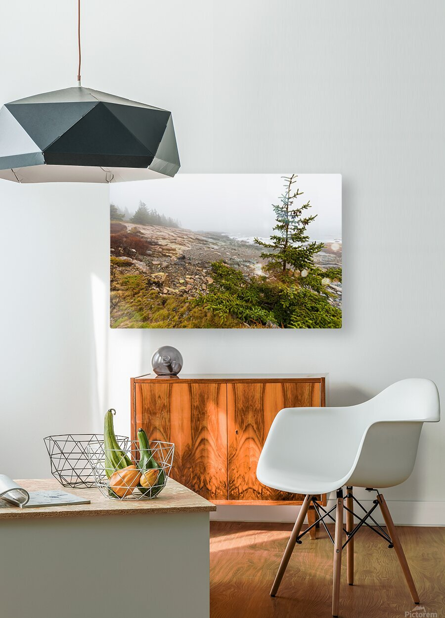 Lone Pine ap 2284  HD Metal print with Floating Frame on Back