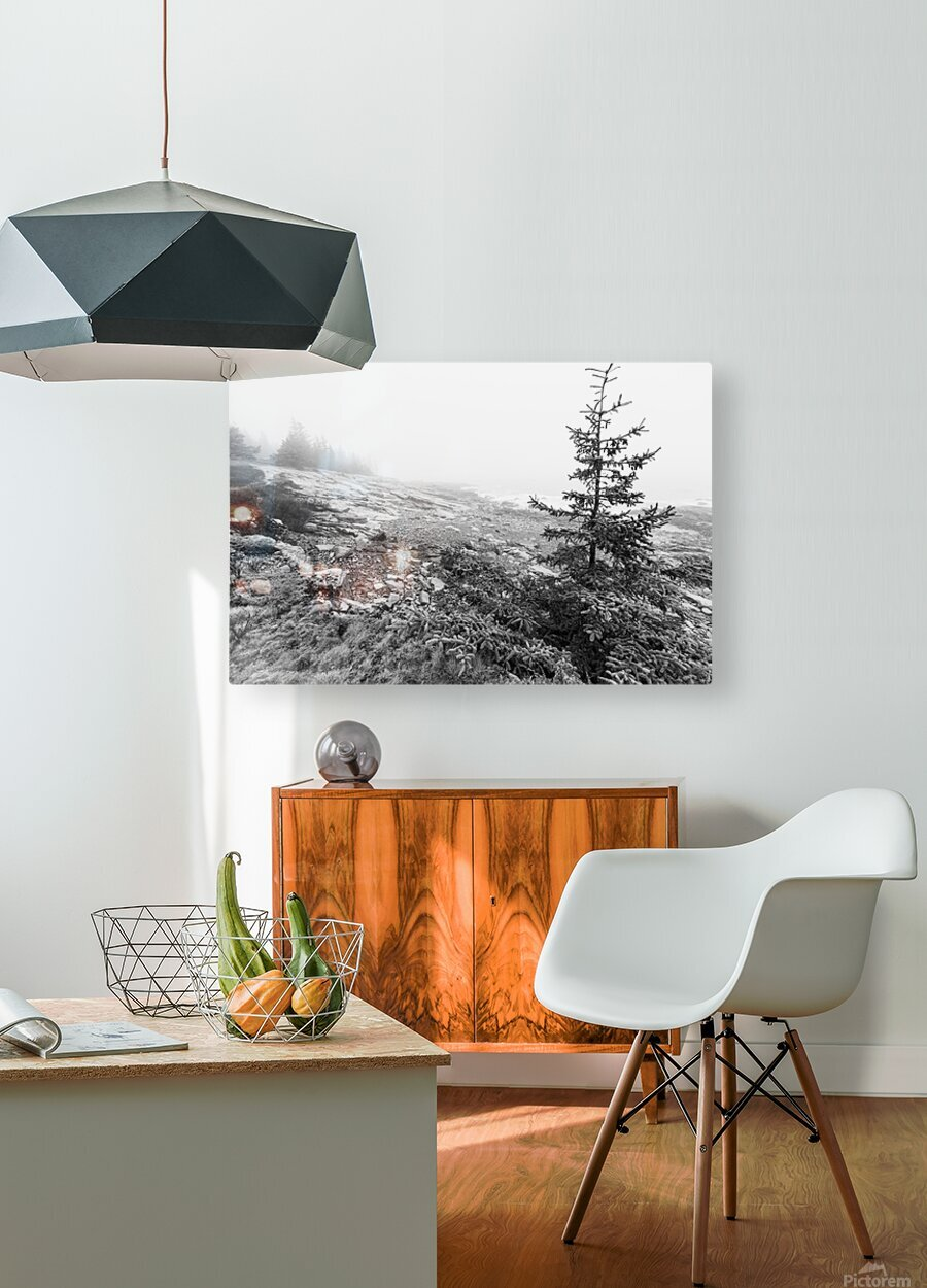 Lone Pine ap 2284 B&W  HD Metal print with Floating Frame on Back