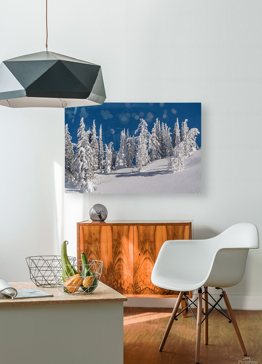 Alpine moon  HD Metal print with Floating Frame on Back