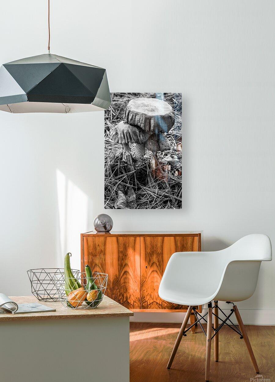 Mushrooms ap 1558 B&W  HD Metal print with Floating Frame on Back