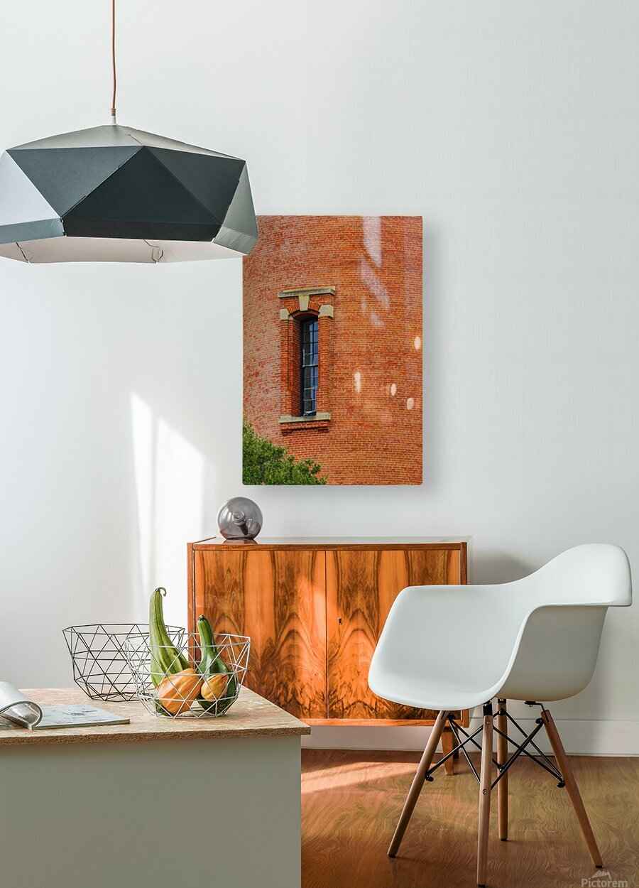 Window Study ap 2095  HD Metal print with Floating Frame on Back