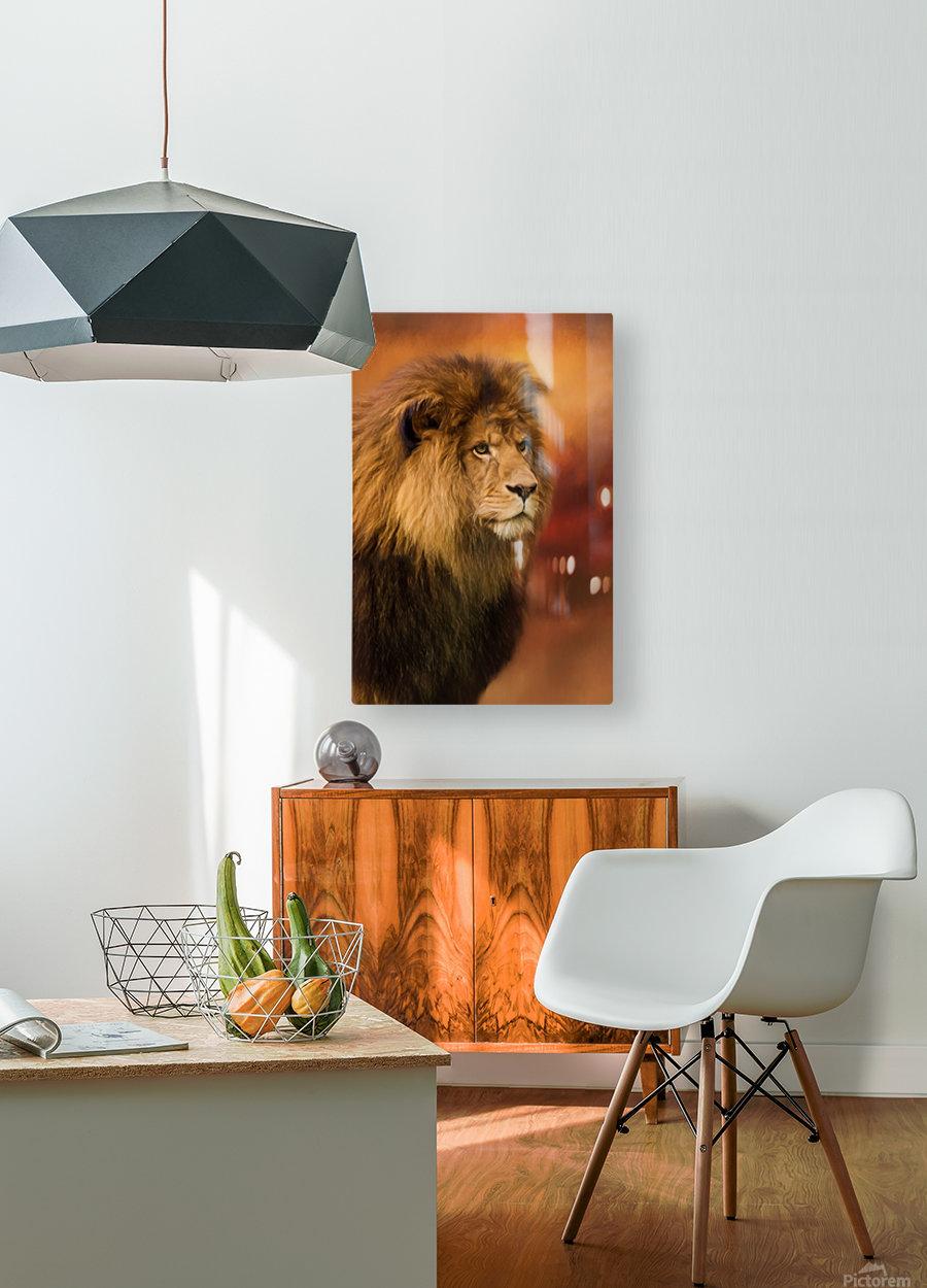 Lion Legacy - Lion Art by Jordan Blackstone  HD Metal print with Floating Frame on Back