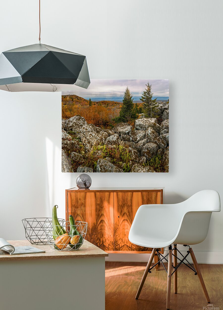 Bear Rocks Overlook apmi 1789  HD Metal print with Floating Frame on Back
