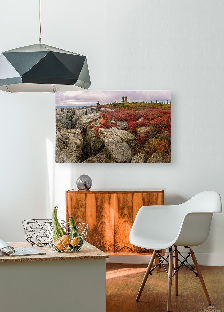 Bear Rocks Preserve apmi 1790  HD Metal print with Floating Frame on Back