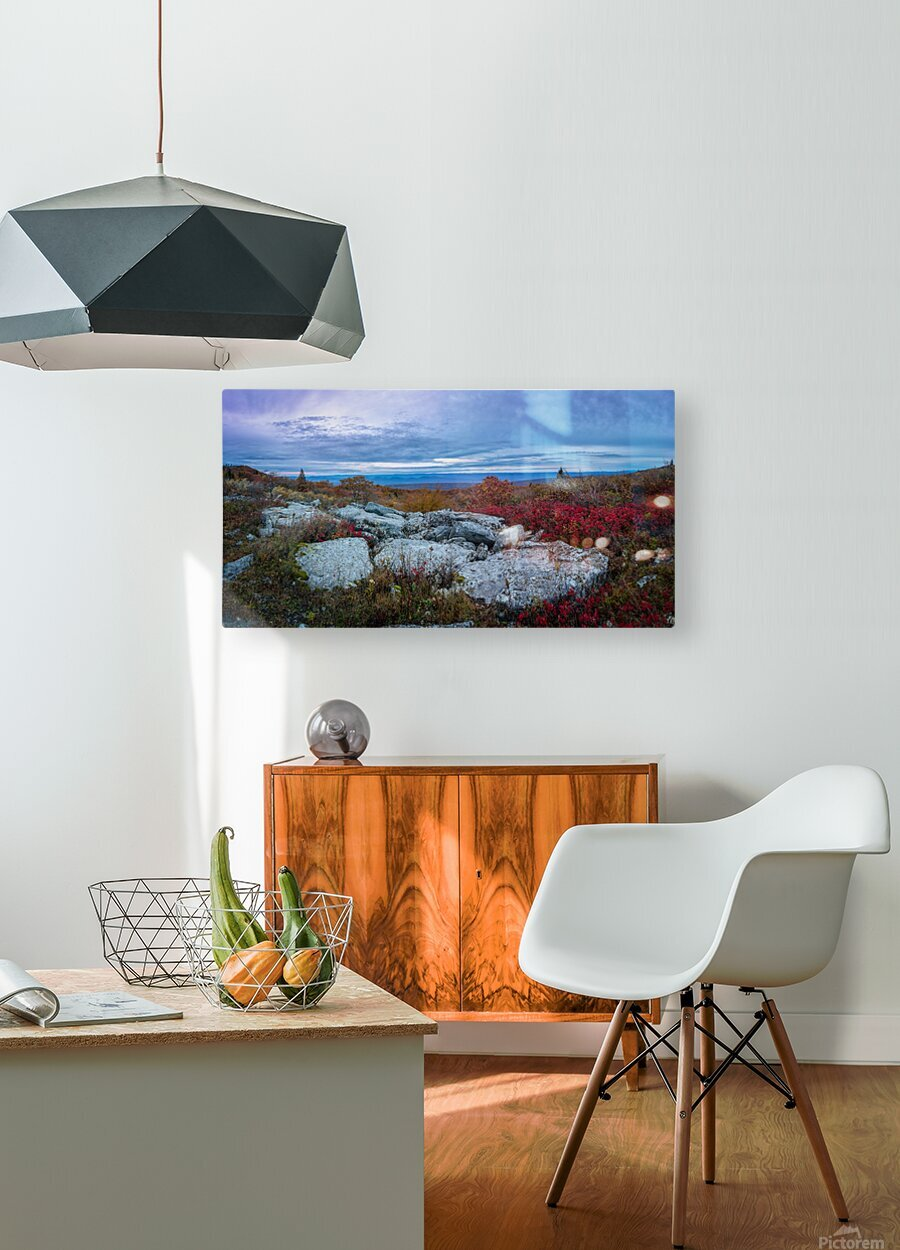 Blueberries apmi 1779  HD Metal print with Floating Frame on Back