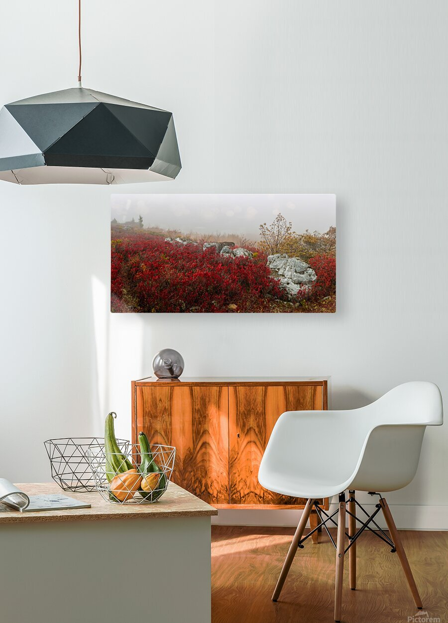 Blueberries and Boulders apmi 1808  HD Metal print with Floating Frame on Back