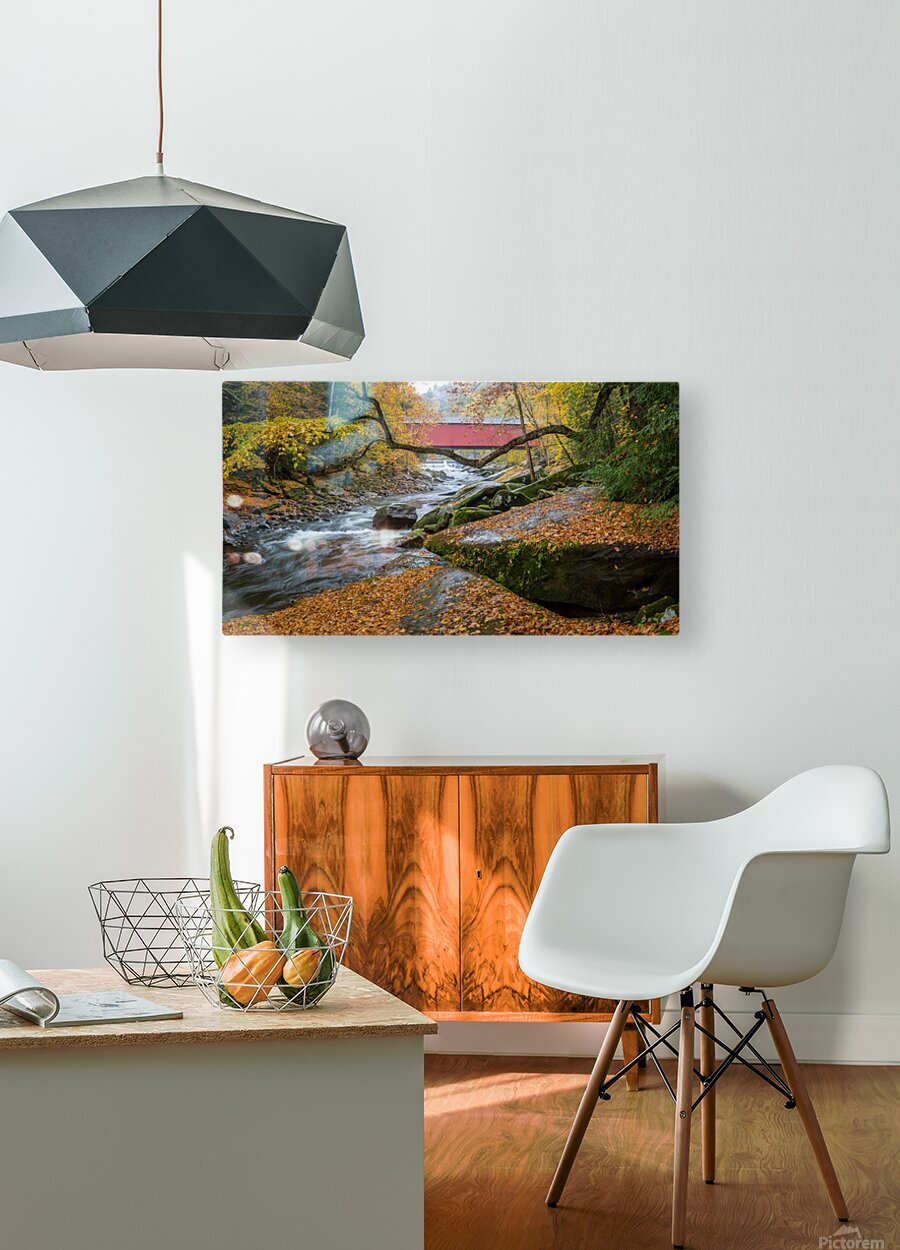 Covered Bridge apmi 1954  HD Metal print with Floating Frame on Back
