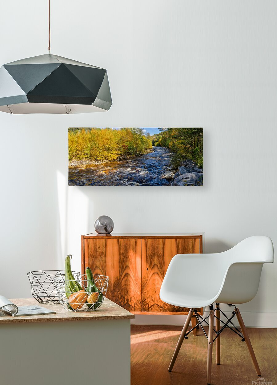 Red Creek Aspens apmi 1769  HD Metal print with Floating Frame on Back