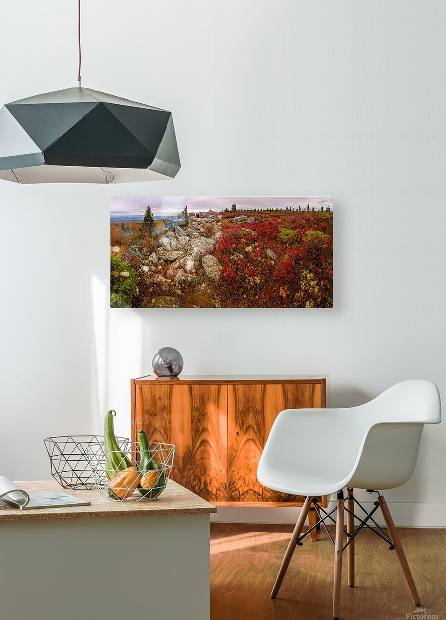 The Colors of Nature apmi 1786AL  HD Metal print with Floating Frame on Back