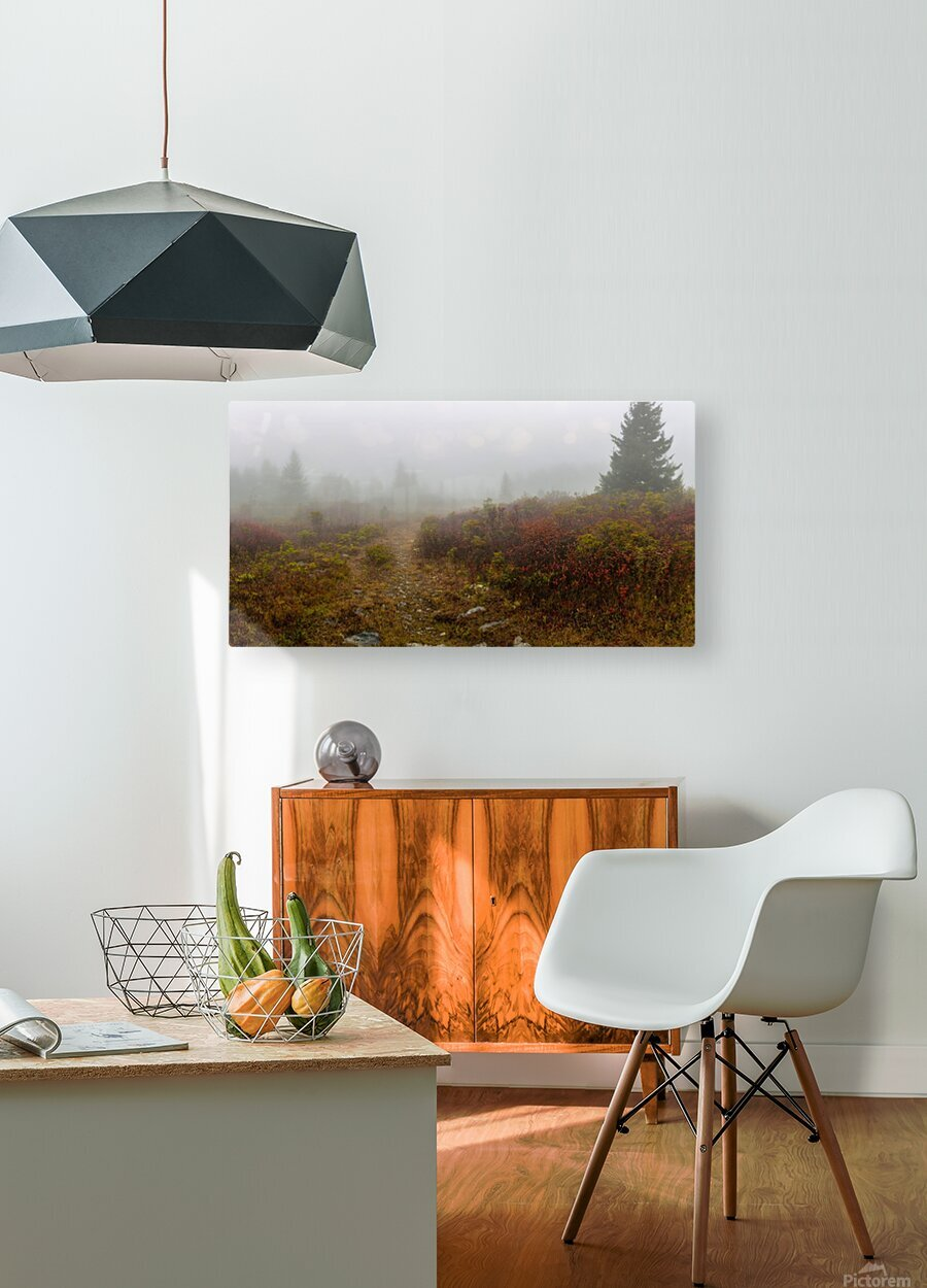 Trail Entrance apmi 1840  HD Metal print with Floating Frame on Back