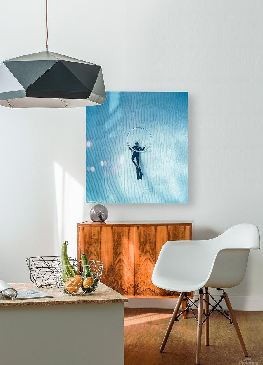 diver 3  HD Metal print with Floating Frame on Back