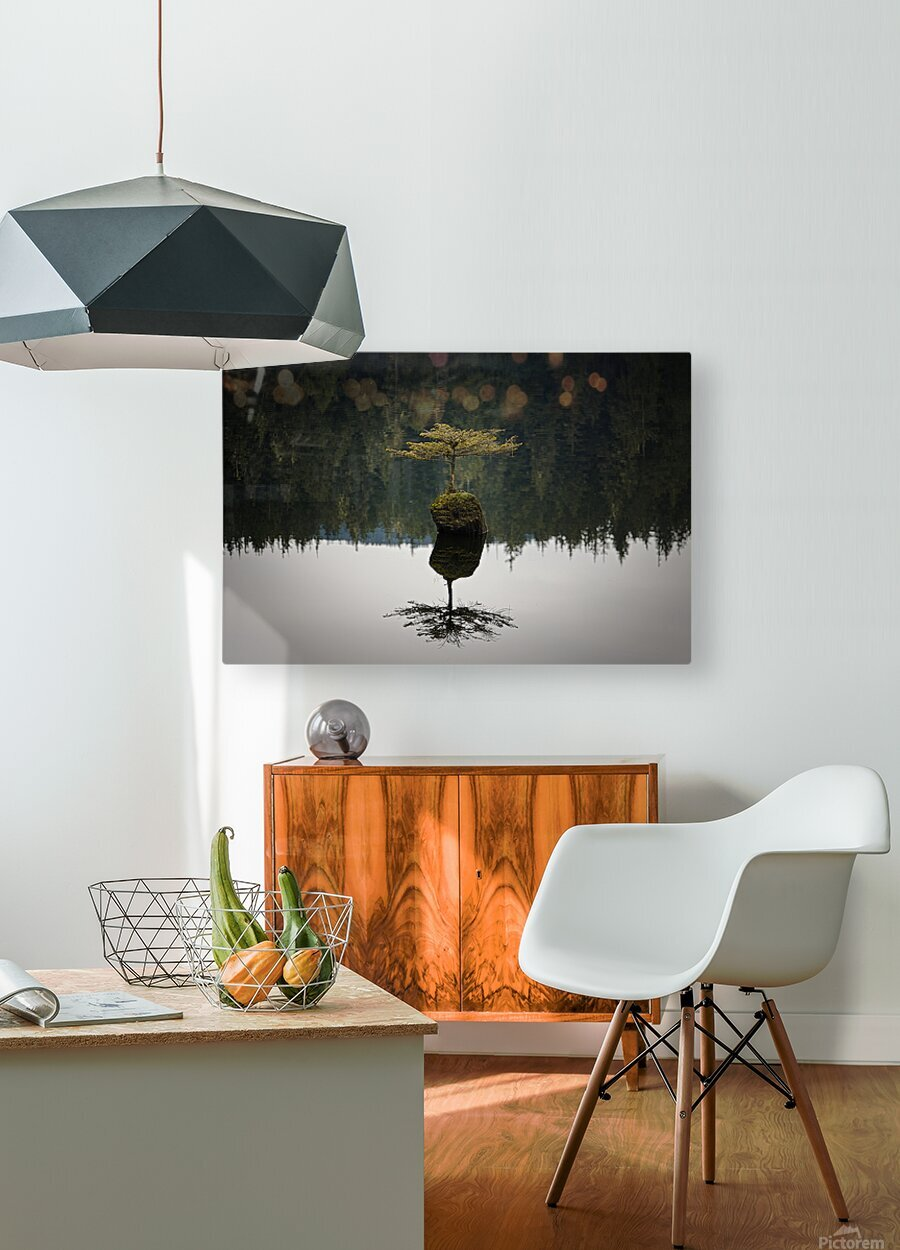 Reflection on a Bonsai Tree  HD Metal print with Floating Frame on Back