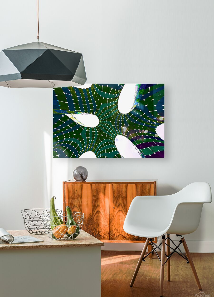 Vaulted Rainbow  HD Metal print with Floating Frame on Back
