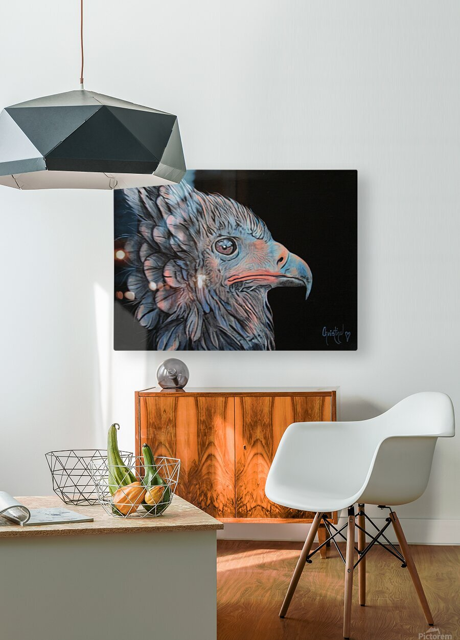Insomniac  HD Metal print with Floating Frame on Back