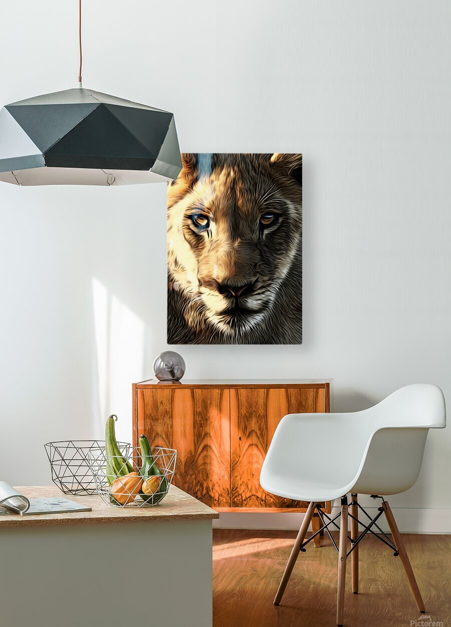 Lions Head  HD Metal print with Floating Frame on Back