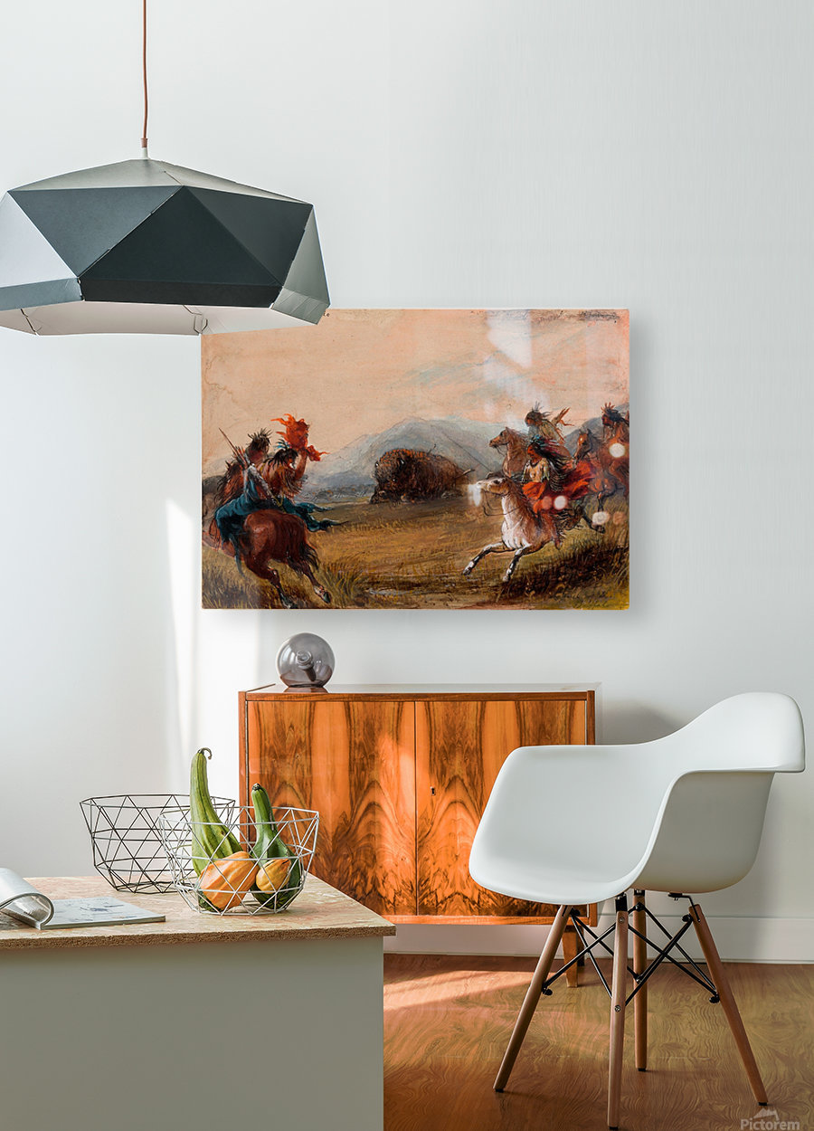 Wounded Buffalo  HD Metal print with Floating Frame on Back
