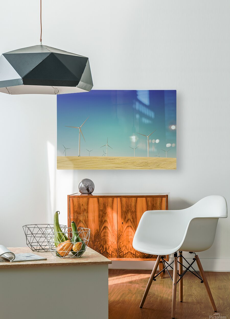 Wondering With The Wind  HD Metal print with Floating Frame on Back