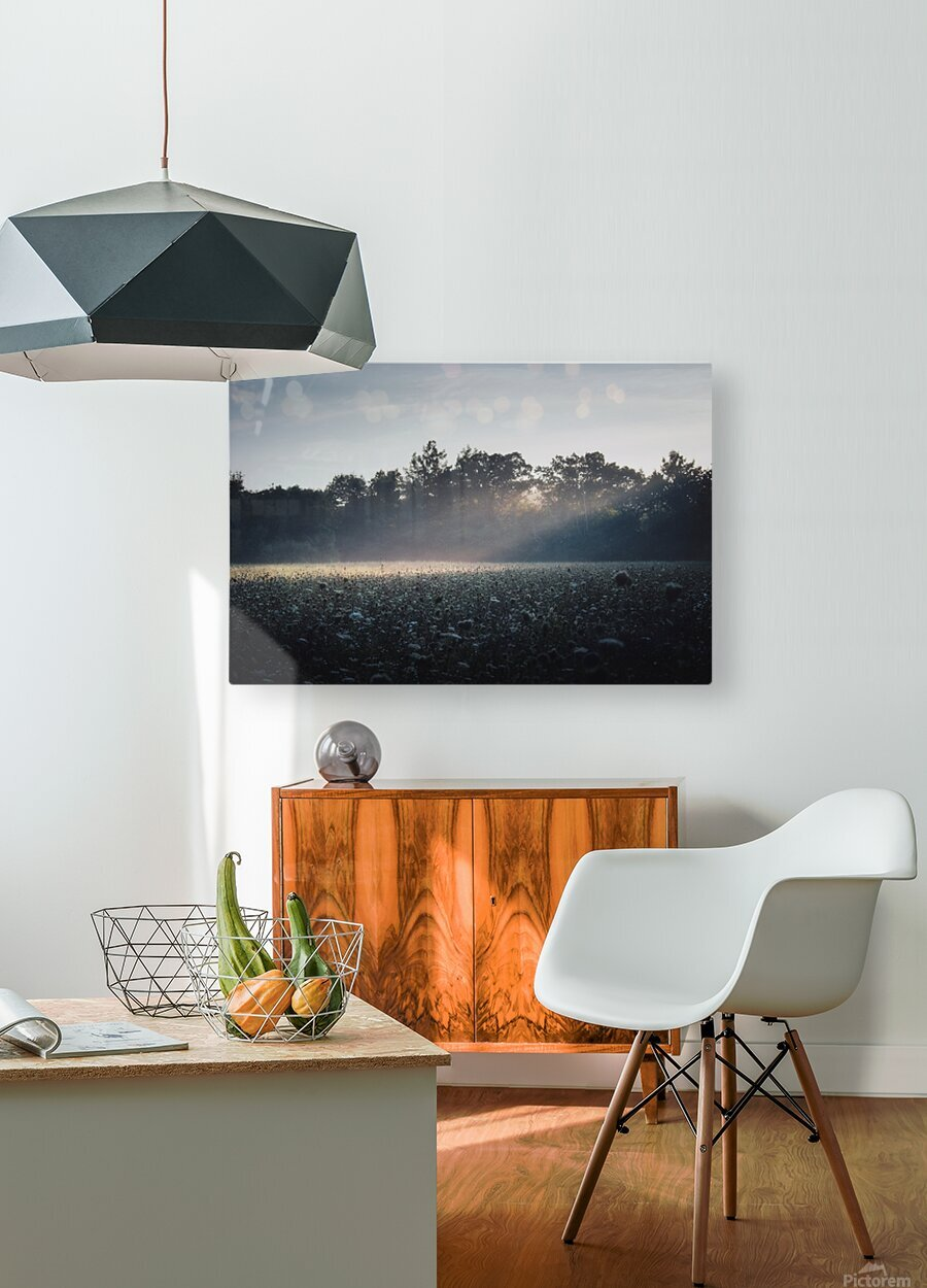Pennsylvania Sunrise  HD Metal print with Floating Frame on Back