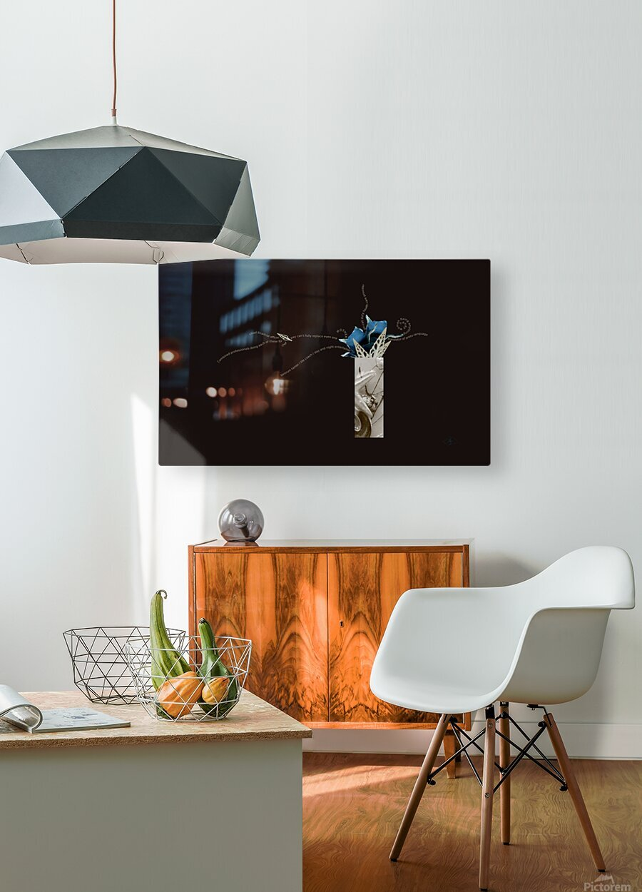 unpaid and unsung  HD Metal print with Floating Frame on Back