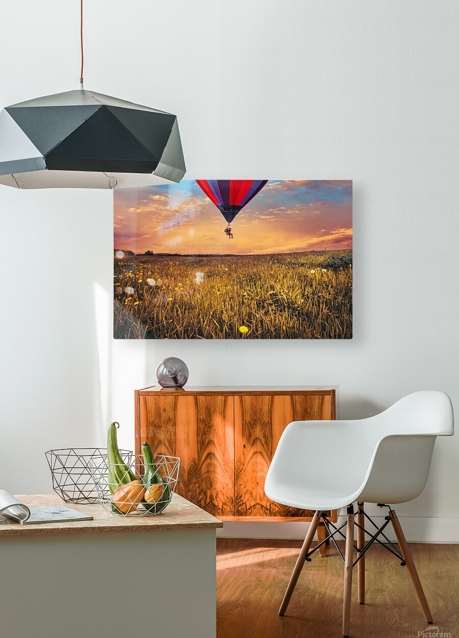 The Aeronaut  HD Metal print with Floating Frame on Back