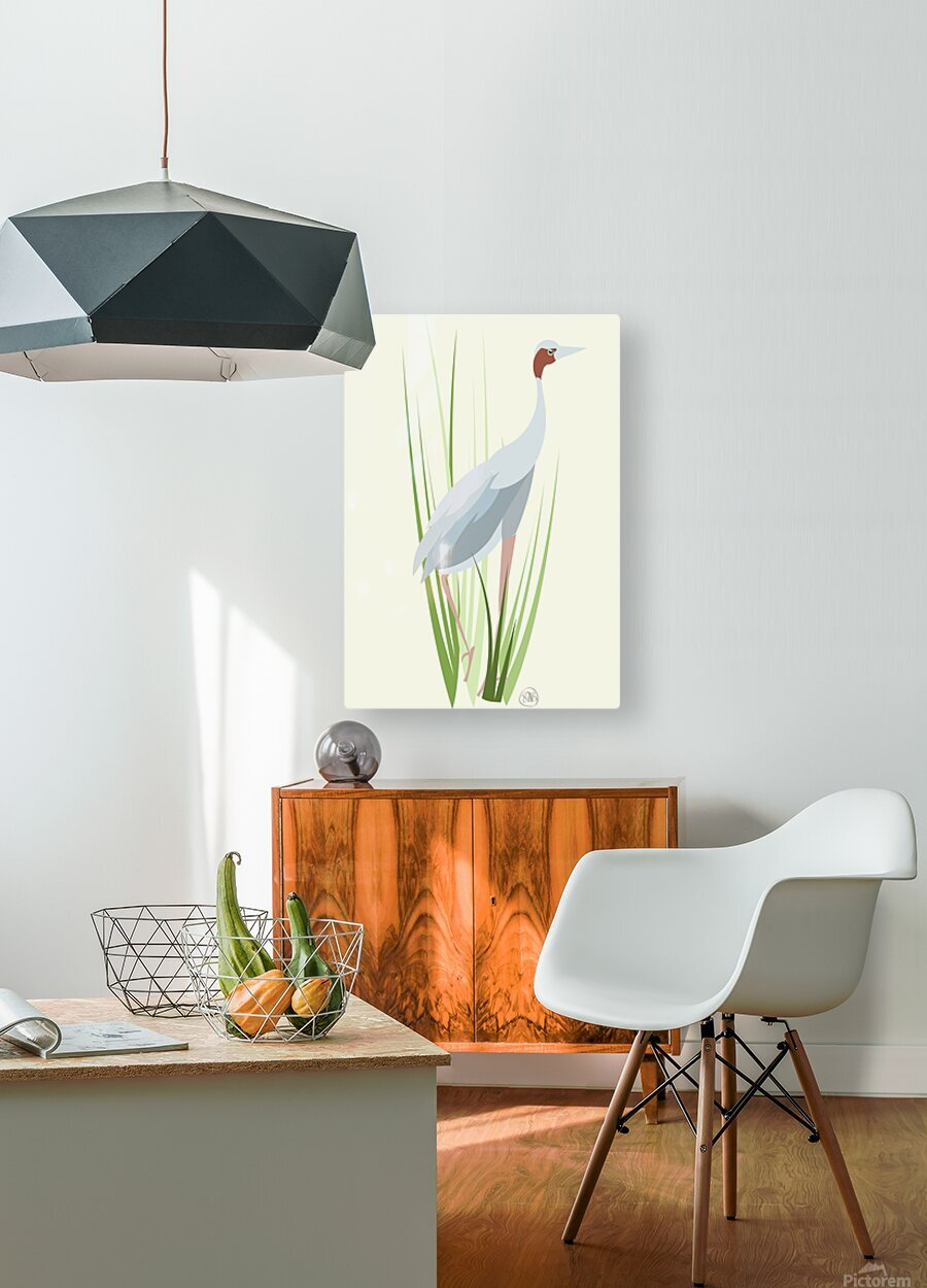 Sarus Crane  HD Metal print with Floating Frame on Back