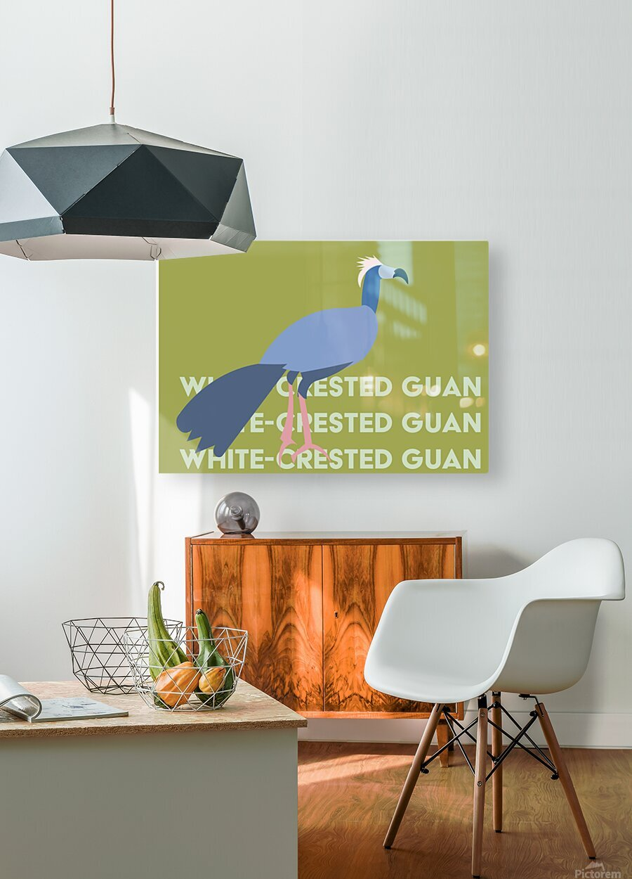 White-Crested Guan  HD Metal print with Floating Frame on Back