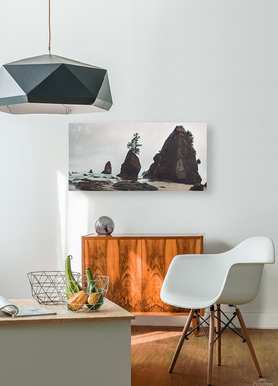 Shi Shi Beach  HD Metal print with Floating Frame on Back