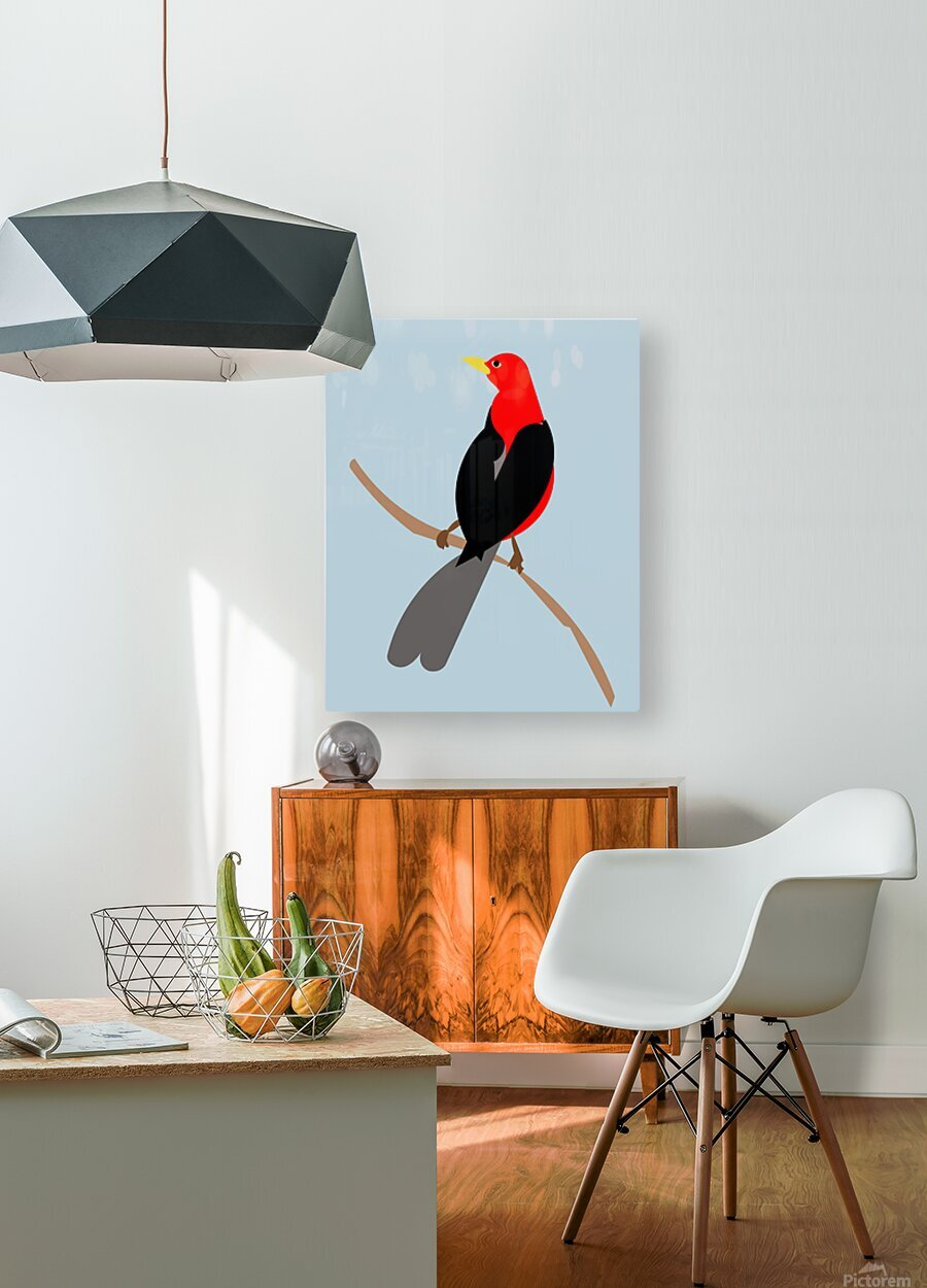 Scarlet TANAGER  HD Metal print with Floating Frame on Back