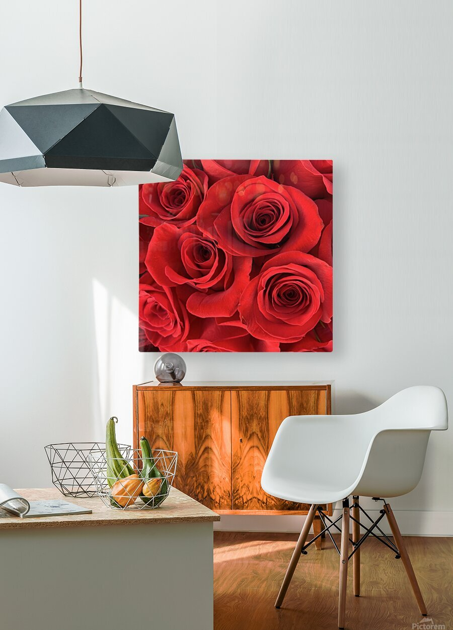Eternal Roses  HD Metal print with Floating Frame on Back