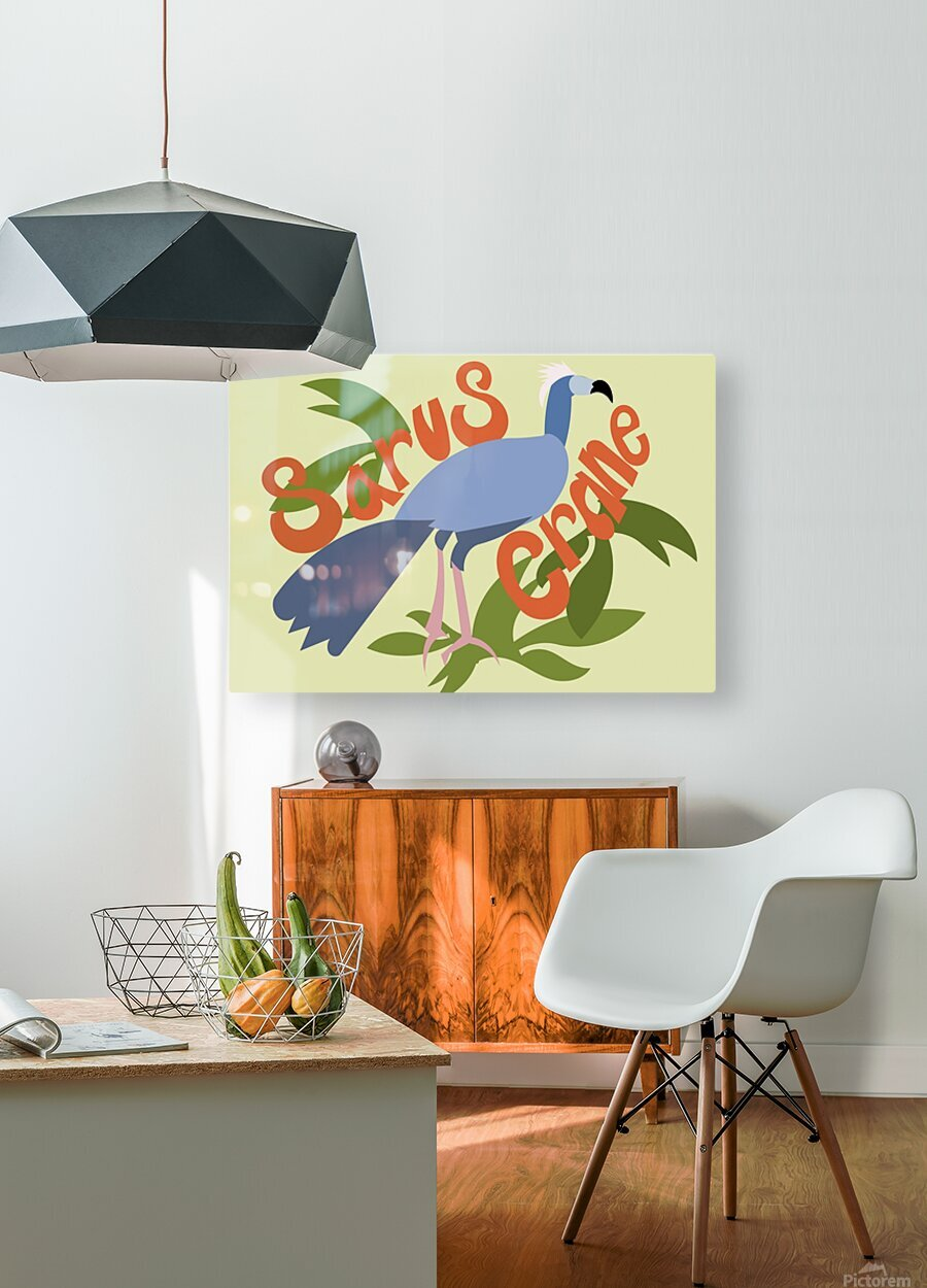 The Sarus Crane  HD Metal print with Floating Frame on Back